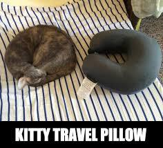 travel meme images Kitty travel pillow weknowmemes jpg