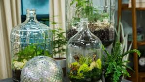 sealed bottle garden how to diy sealed bottle garden hallmark channel