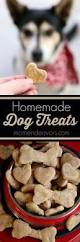 79 best images about dog stuff on pinterest dog biscuits