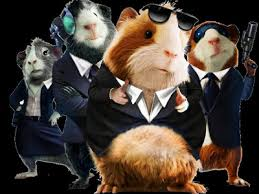 coloring endearing force guinea pigs gforce movie jpg ssl