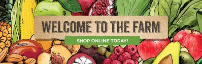 fruit delivery service why should you go for online fruit and vegetable grocery delivery