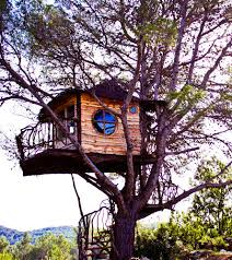 famous tree houses let s go live in a tree house