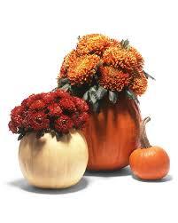 pumpkin cachepots martha stewart