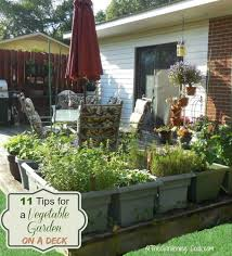 vegetable garden hacks 14 fun and clever gardening ideas