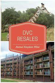 Villas At Wilderness Lodge Floor Plan by 19 Best Animal Kingdom Villas Dvc Images On Pinterest Villas