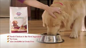 hill u0027s pet nutrition tv commercial for science diet ideal balance