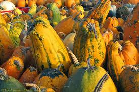 Halloween Light Decoration Ideas by Decoration Ideas Extraordinary Image Of Light Orange And Green