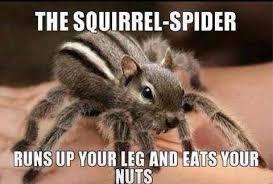Fear Meme - the only spider all men fear meme guy