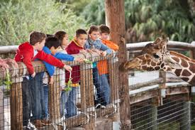 why the oklahoma city zoo is ranked 11 in the country