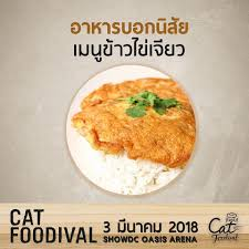 radio cd cuisine cat radio อาหารบอกน ส ย โดยหมอสองสามม ต 3 ม นาคมน