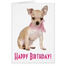 chihuahua birthday cards u0026 invitations zazzle co uk