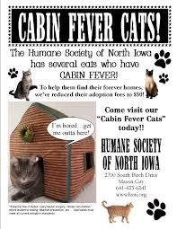 humane society of north iowa animals for adoption