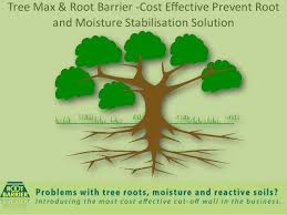 tree max root barrier cost effective prevent root and moisture sta