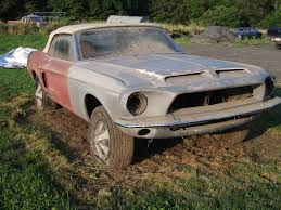 mustang project cars for sale 1968 shelby barn find rustingmusclecars com