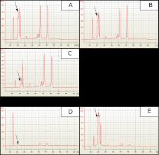 a practical examination of rna isolation methods for european pear