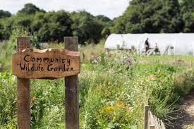 retreat to green farm kent dose