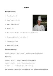 Chef De Partie Resume Sample by Ch0547 Chang Chun Liu Cv English