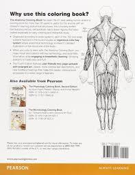 anatomy coloring book pearson impressive decoration anatomy coloring book the 4th edition
