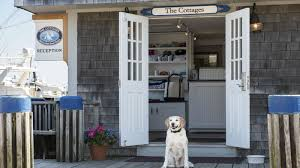 Cottages That Allow Dogs by Pet Friendly Hotel In Nantucket The Cottages U0026 Lofts At The Boat