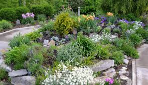 easy rock garden ideas simple with sitting area beautiful