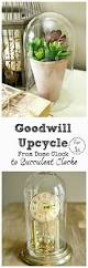 Upcycle That - goodwill upcycle that was a cloche one bless u0027er house