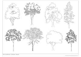 free cad blocks trees 02 first in architecture