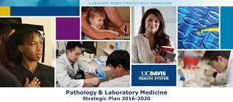 Association Of Pathology Chairs Department Of Pathology And Laboratory Medicine Uc Davis Health