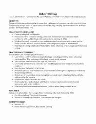 Child Care Worker Sample Resume Free Sample Foster Care Social Worker Sample Resume Resume Sample