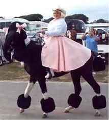 1950 Halloween Costume Pony Horses Poodle Costumes