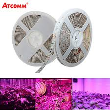 12v dc led grow lights led plant grow lights l smd 5050 led strip light dc 12v 5 meters