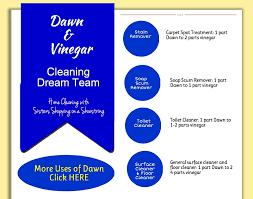 Baking Soda And Vinegar Bathtub Cleaning Dream Team Vinegar And Dawn U2013 Sisters Shopping Farm And Home