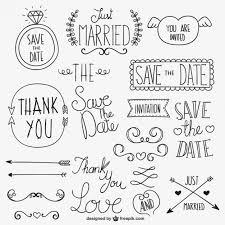 calligraphic wedding ornaments vector free vector in