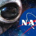 Nasa Will Pay You To Stay In Bed Nasa Will Pay You 18000 Usd To Stay In Bed And Smoke Weed For 70