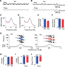 progressive functional impairments of hippocampal neurons in a