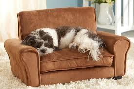 cuccie per cani tutte le offerte cascare a fagiolo il divanetto per animali domestici dottorgadget