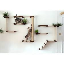 cat wall furniture catastrophic creations cats wayfair
