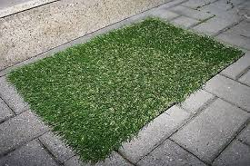 Fake Grass Outdoor Rug How To Install Fake Grass Ebay