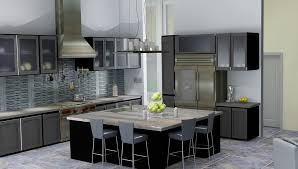 Kitchen Cabinets With Frosted Glass Frosted Glass For Kitchen Cabinets Home Design Ideas