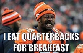 Funny Super Bowl Memes - best superbowl 50 memes23