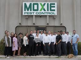 pest control services company utah moxie pest control
