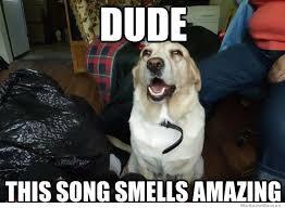 High Dog Meme - weed dog meme http www zipgrinders com utm source