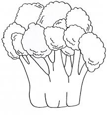 broccoli vegetable coloring pages for kids y7 printable
