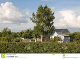 small country houses russian small country house stock photo image 31919402