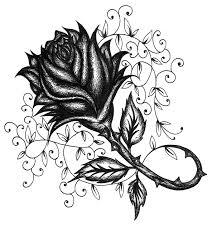 vine tattoos for nature hanslodge cliparts
