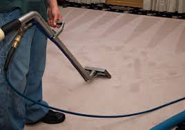 what s that smell what to do when your home stinks porch advice carpet cleaners 004