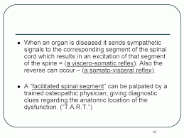 Visceral Somatic Reflex Spinal Manipulation For The Pain Manager U0027s Toolbox Articles