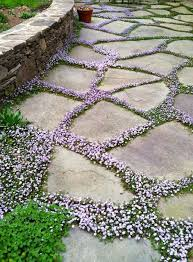 How To Lay A Paver Best 25 Flagstone Patio Ideas On Pinterest Flagstone Stone