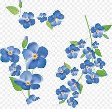 flower clip flower clip forget me not png 6905 6683 free