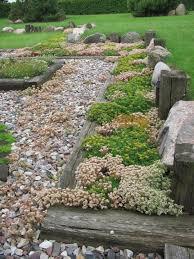Rock Garden Cground 50 Best Rock Gardens Images On Pinterest Backyard Ideas Garden