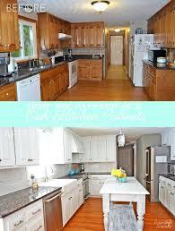 Best Way To Update Kitchen Cabinets Ways To Redo Kitchen Cabinets U2013 Petersonfs Me